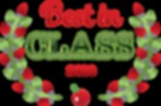 2018-best-in-class-logo-01 cropped copy.