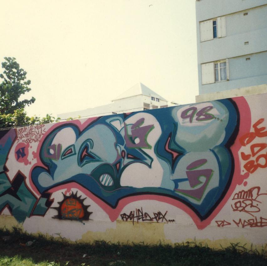 Ice-StDenis_1998