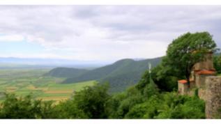 Грузия: новые винные бренды