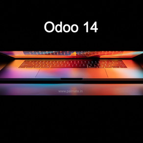 Odoo 14 - The Most Clever Odoo Ever