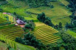 vietnam_cambodia_2015_1295