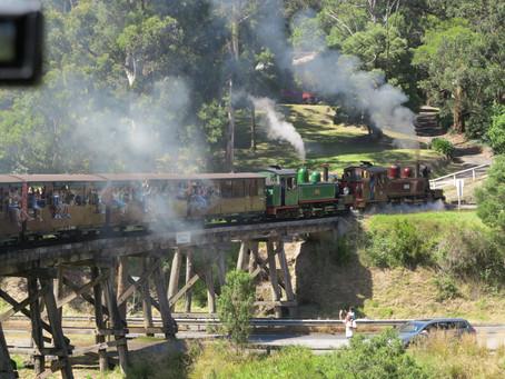 Puffing Billy Steam Train & Healesville Wildlife Day Tour