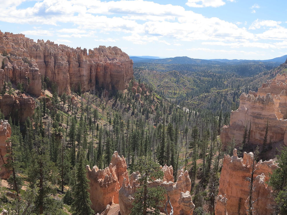 Bryce Canyon has been towards the top of our National Park MUST-DO! list for quite some time now. And we are so excited to finally be able to check it out and off our National Parks list! This was a GREAT Day!