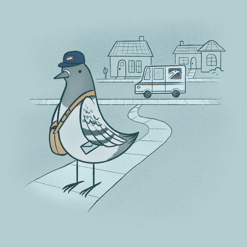 Animal Professions: Mail Pigeon