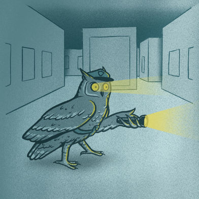 Animal Professions: Security Guard Owl