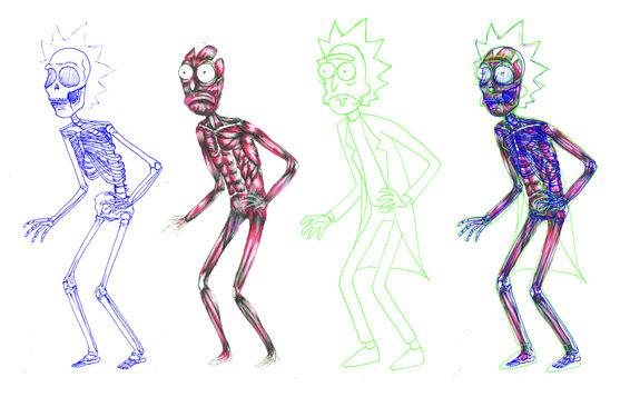 Rick Anatomy