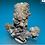 Thumbnail: Danburite Crystals with Druzy Quartz Specimen