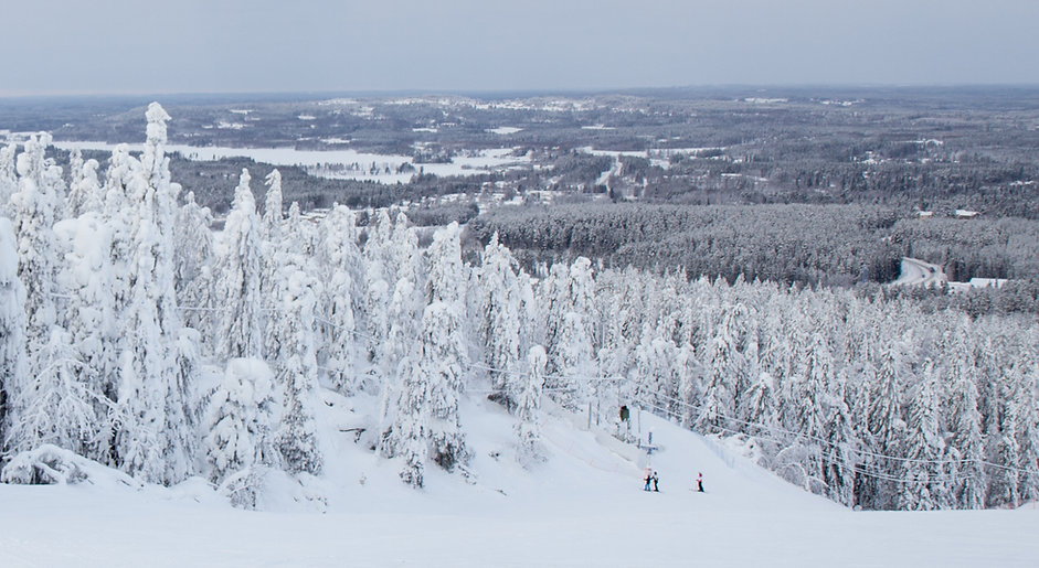 winter-finland-tree-ski-cold-snow-142140