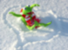 snow-cold-winter-frog-extreme-sport-toy-