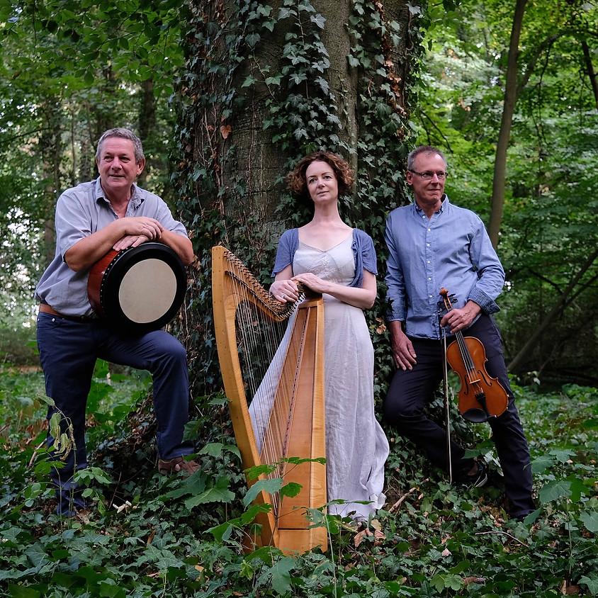 KuSo o21 > ABGESAGT wegen Corona > The ROBBIE DOYLE Band - Traditional Irish Folk