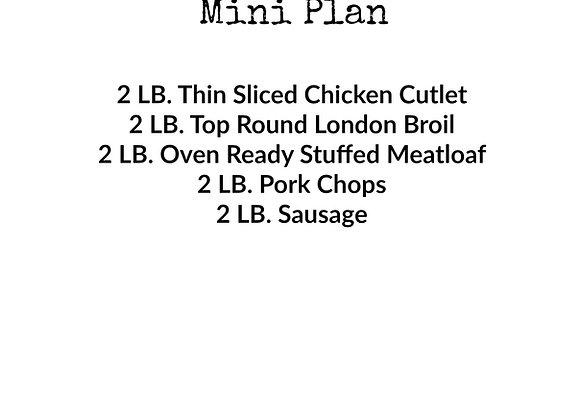 Mini Plan