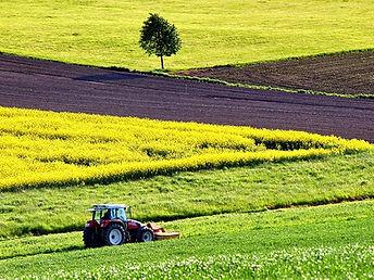 agriculture-1619437_960_720.jpg
