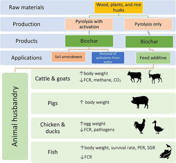 Biochar for animals.png