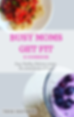 BUSY MOMS GET FIT RECIPE E-BOOK COVER.pn