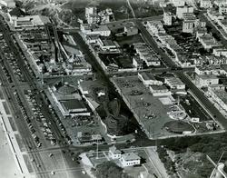 esp 1948