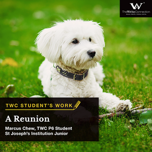 A Reunion, TWC Student's Composition, Model Composition