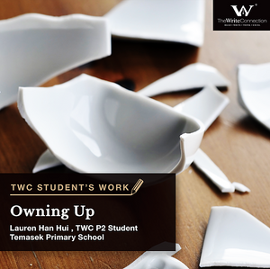Owning Up, TWC Student's Composition, Model Composition
