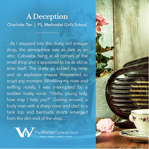 A Deception, TWC Student's Composition, Model Composition