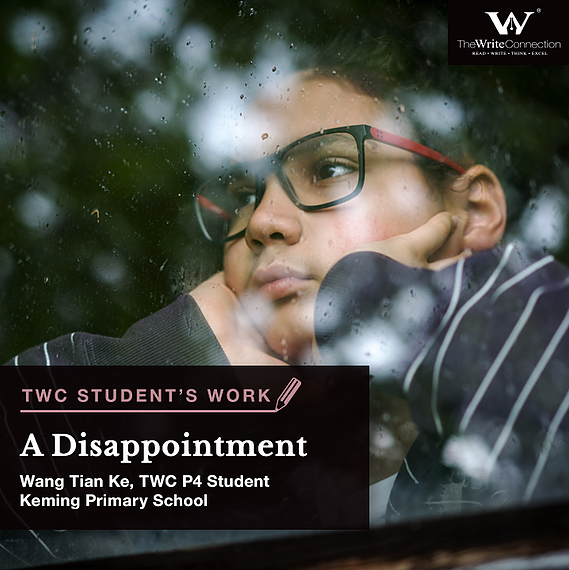 A Disappointment, TWC Student's Composition, Model Composition