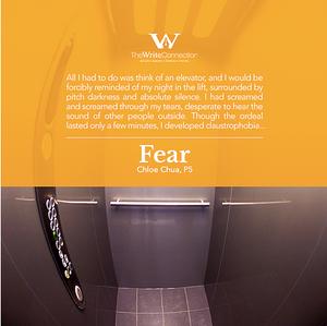 Fear, TWC Student's Composition, Model Composition