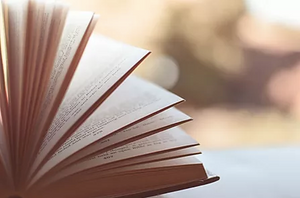 The Importance of Reading and Writing Critically