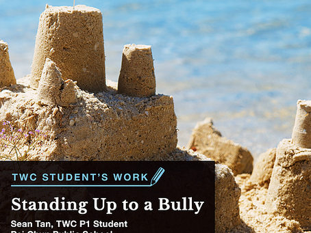 Standing Up to a Bully