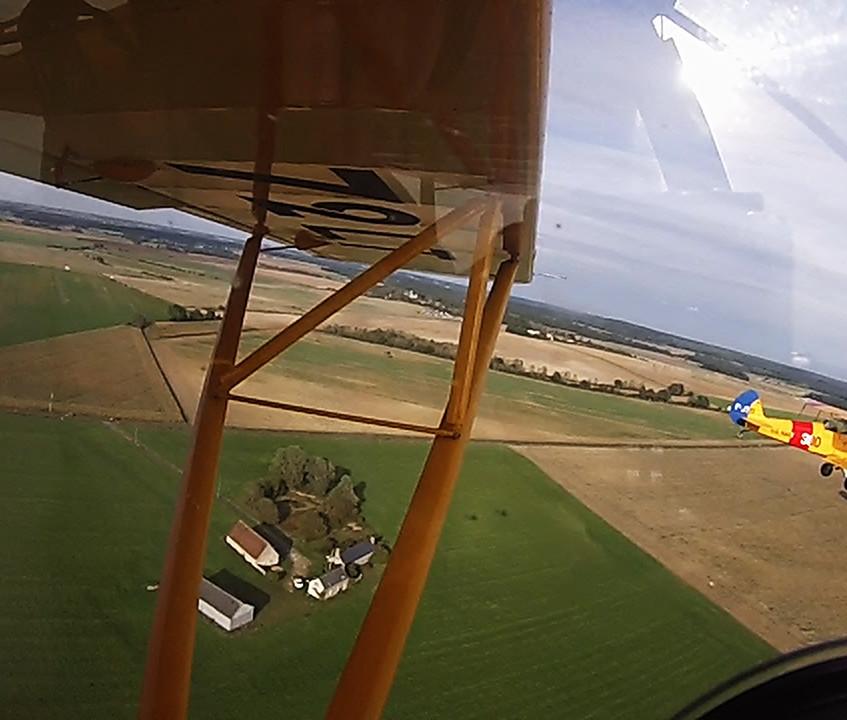 yellow Fly vintage Saumur