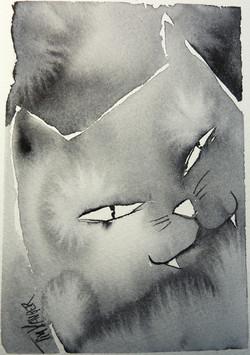 knepig katt Såld!