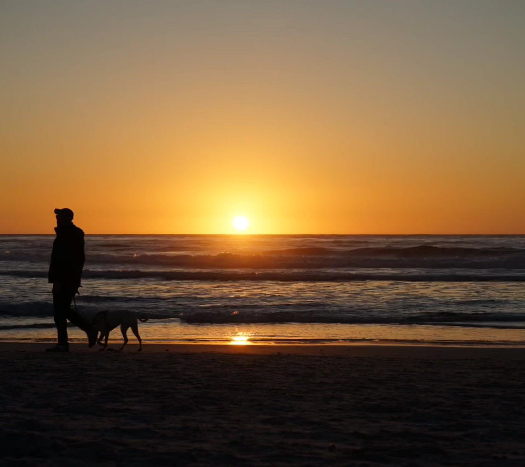 carmel-sunset-dog-mariashaynaphoto.MOV