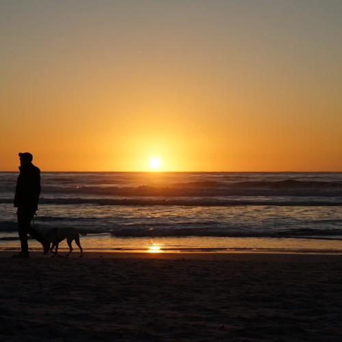 carmel-sunset-dog-mariashaynaphoto.MOV