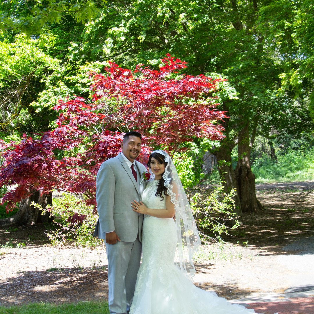 Sonoma State Wedding Photos