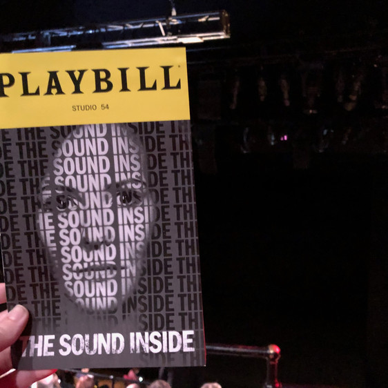 Review: The Sound Inside, starring Mary-Louise Parker