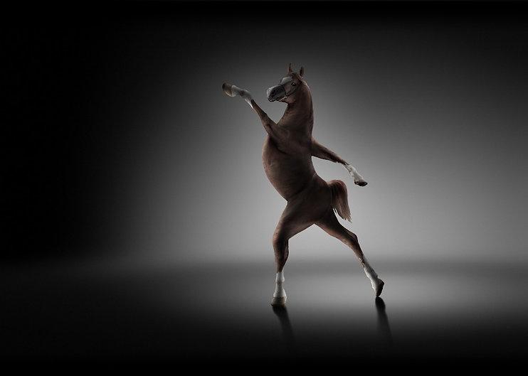 Ballernia_Horse_RTF_edited.jpg