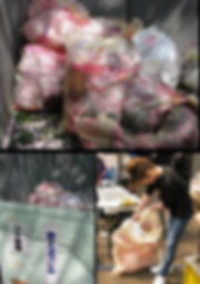 お米プラスチック ごみ袋 屋外イベント用 屋台 おまつり 高田城観桜会 バイオマスプラスチック