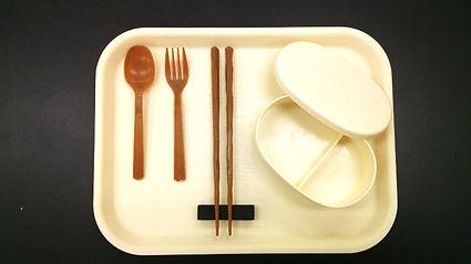 バイオマスプラスチック バイオプラ 製造 トレー ホタテ貝殻 プラスチック 防カビ 射出成形 バイオマスプラ 木質プラスチック 箸