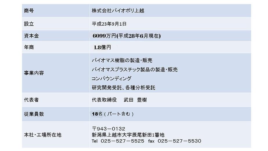 会社概要 プレゼン1枚_edited.jpg