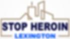 SHL Logo_edited-3.png