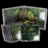 Jewel-Case-Product-Color1-1024x1024-1.pn