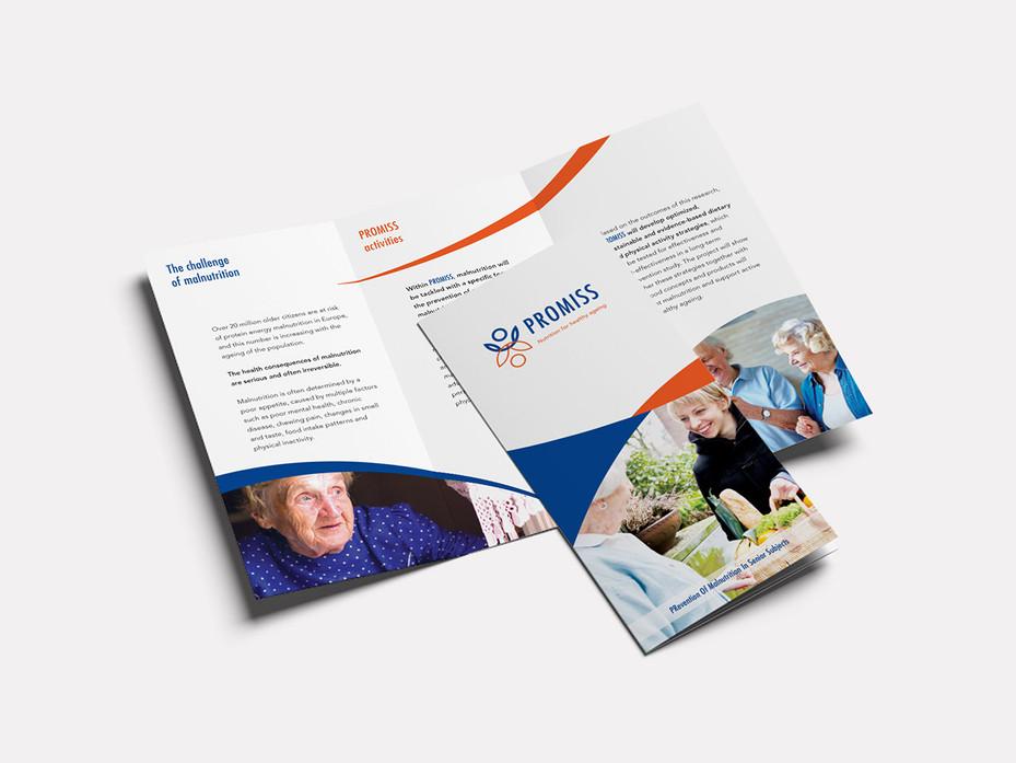 Promiss_leaflet.jpg