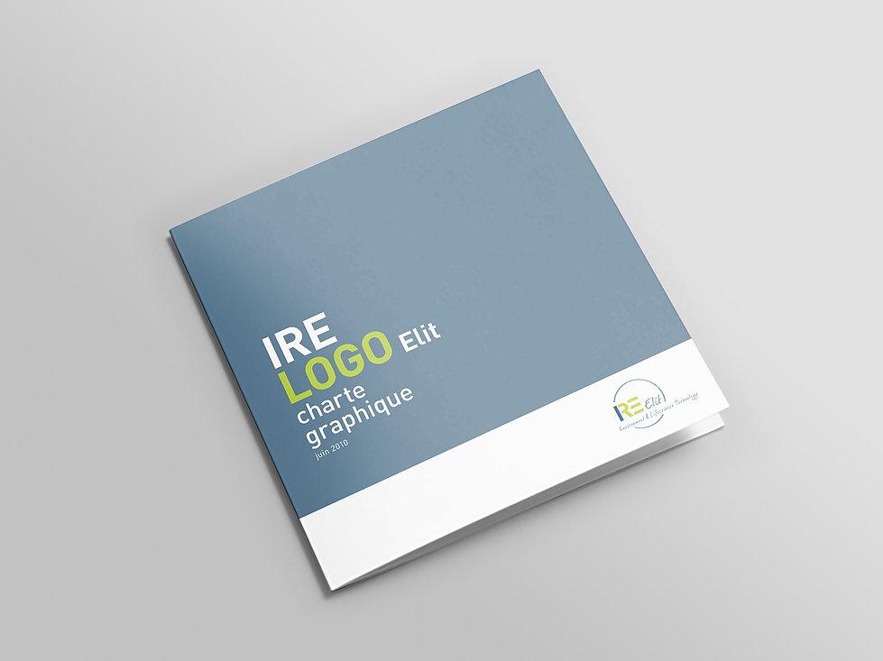 IRE logo 2.jpg