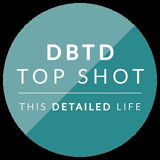 DBTD-new3.png