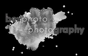 bexphoto logo old