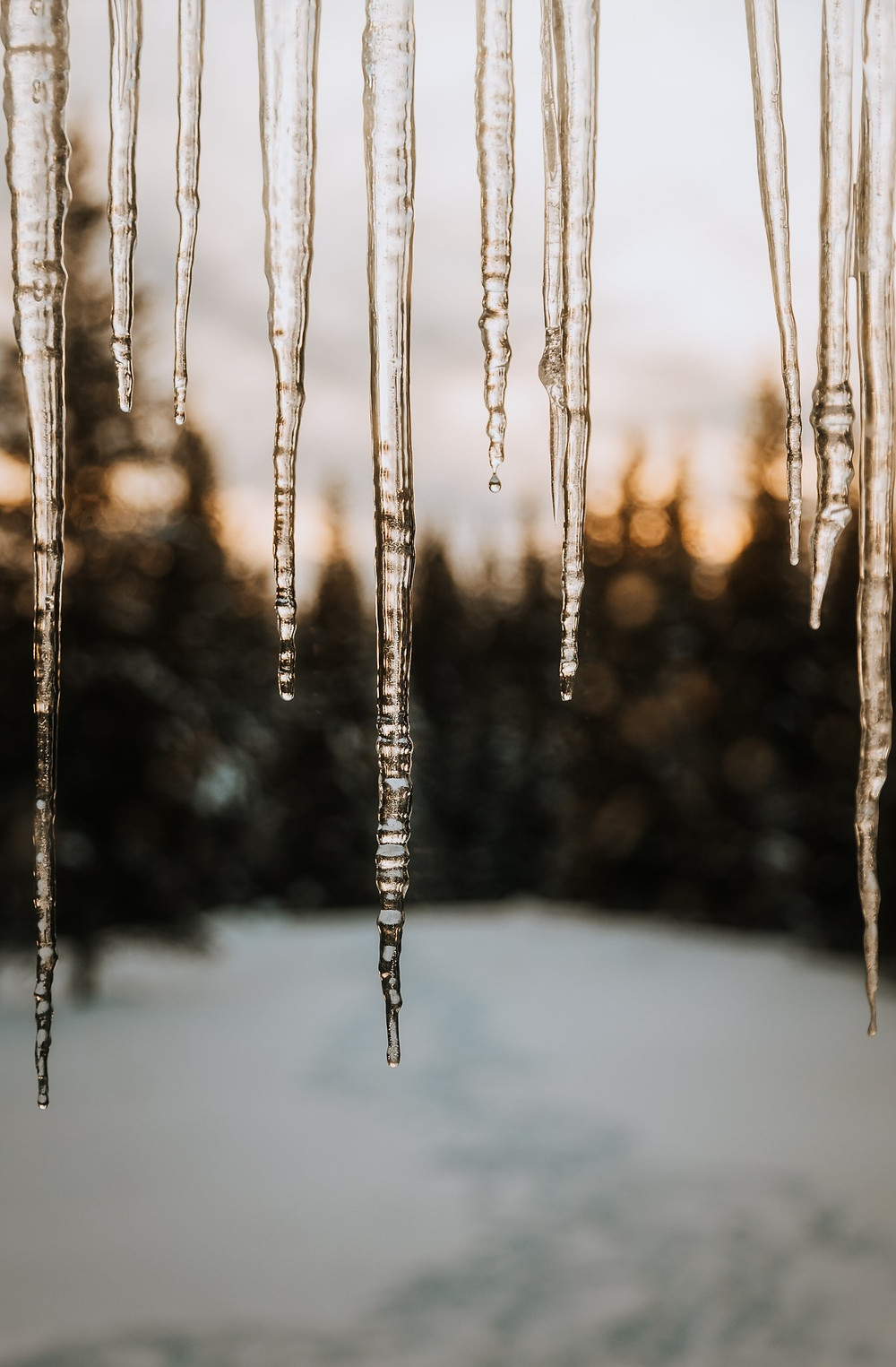 Icicles details by Anna Hurley