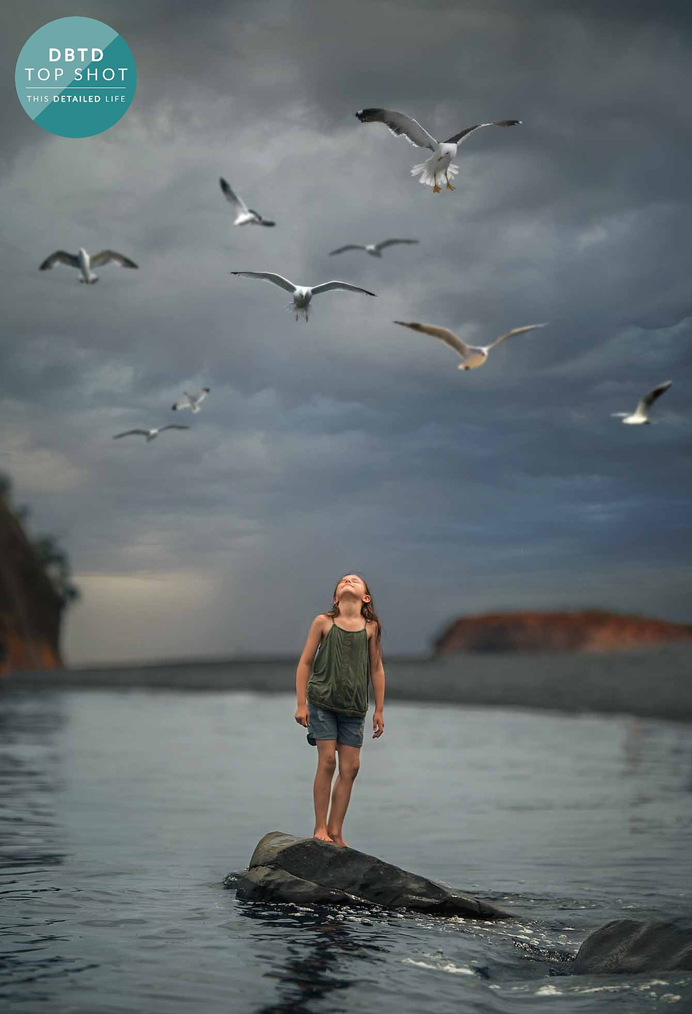 girl and seagulls over the ocean