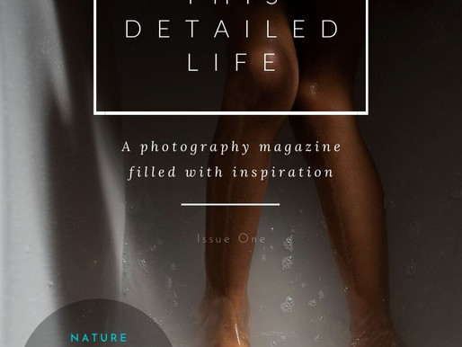 THIS DETAILED LIFE - THE MAGAZINE
