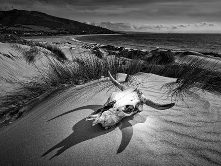 Punta Paloma, one of the iconic beaches of Europe.