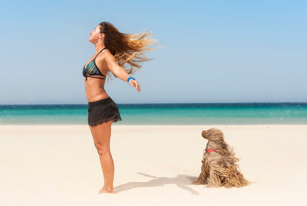 Woman and rasta dog at a windy beach.