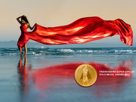 2 Gold medal awards in the world´s largest photo art contest.
