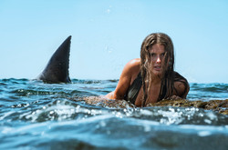 Woman and great white shark.