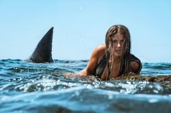 Mujer y tiburón blanco.